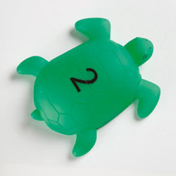 TTS Talking Turtles - (Set of 10) [EY06599 , EY04196]