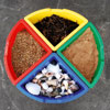 Exploration Circle Set - includes Four Coloured Trays - CD38062