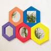 Large Hexagonal Softies Set - Set of 5 - CD72085