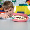 Giant Teeth Dental Demonstration Model - CD03083