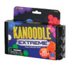 Kanoodle Extreme Logic Puzzle - Includes 303 brain-boosting puzzles! - by Educational Insights - EI-3023