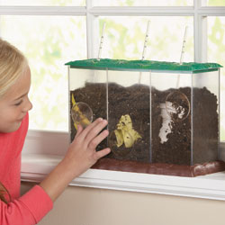 Now You See It, Now You Don't - See-Through Compost Container - by Educational Insights