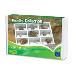 GeoSafari Fossils Collection - by Educational Insights [EI-5204]
