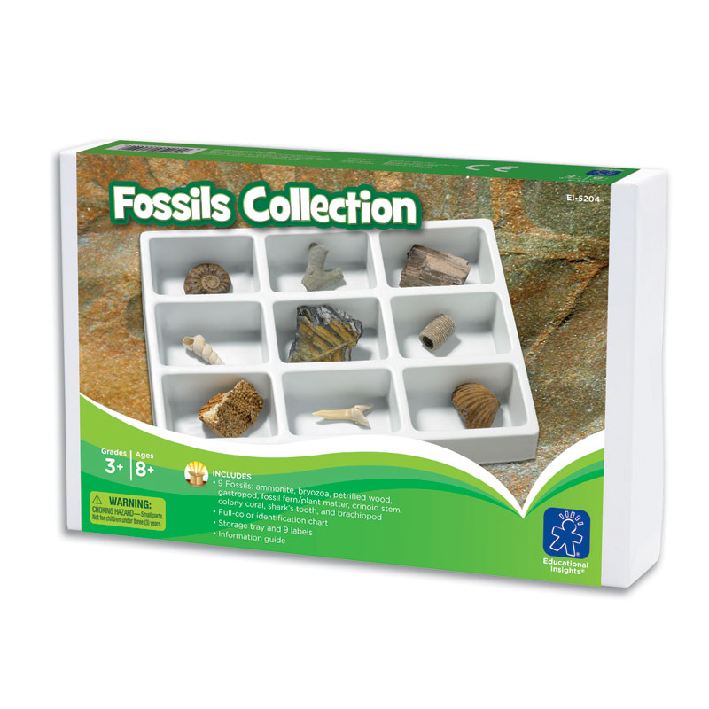 GeoSafari Fossils Collection - by Educational Insights - EI-5204