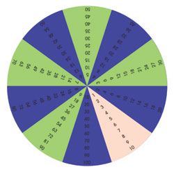 TTS Colourful Foam Times Table Wheel Segments [MA02911]