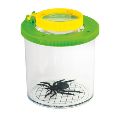 Bug Viewer - Green/Yellow - Pack of 24 - CD61006/24