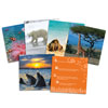 Wild About Animals - Snapshots Critical Thinking Photo Cards - by Learning Resources - LER3362