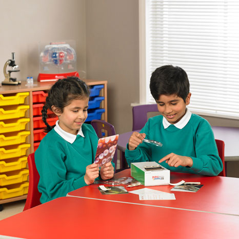 STEM in Action Wild Feet Exploration - Animal Characteristics, Material Properties and Grip - by Learning Resources - LSP2793-UK