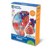 Heart Model 12.5cm - by Learning Resources - LER3334