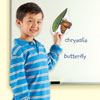 Giant Magnetic Butterfly Life Cycle Demonstration Set - by Learning Resources - LER6043