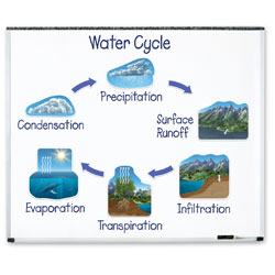 *Box Damaged* Giant Magnetic Water Cycle - by Learning Resources