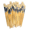 Hog Short Brushes: Flat Tip Mixed Set - Set of 60