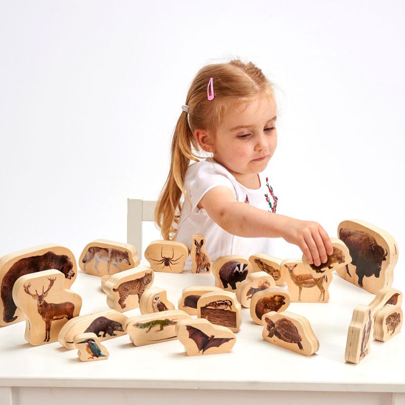 Wooden Forest Animal Blocks - Set of 30 - CD72304