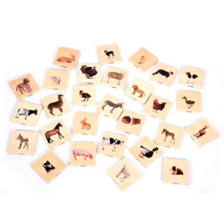 Domestic Animal Family Match Tiles - Set of 28