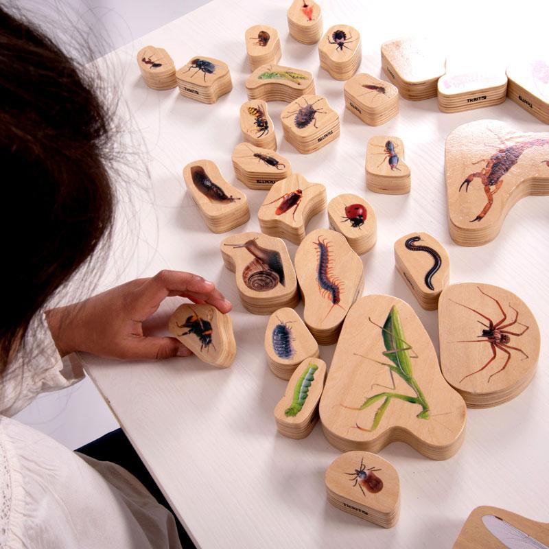 Wooden Minibeast Blocks - Set of 33 - CD73410