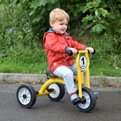 Wisdom Small Trike - For Ages 2-4