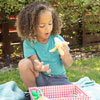 Fruit Basket - by Educational Insights - EI-3685