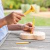 Geosafari Fossil Excavation Kit - by Educational Insights - EI-5340