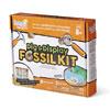 Dig & Display Fossil Kit - H2M93418